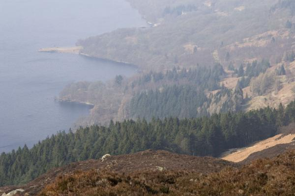 View towards Loch Katrine from the summit of Ben A'an | Ben A'an | United Kingdom