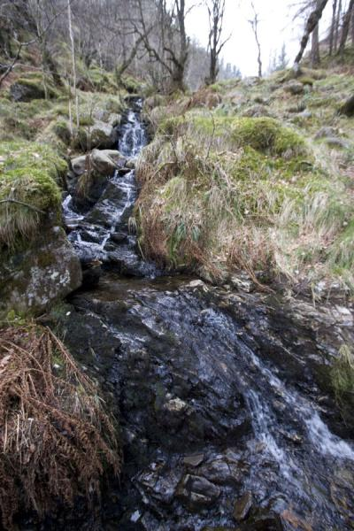 Water running down the flanks of Ben A'an | Ben A'an | United Kingdom