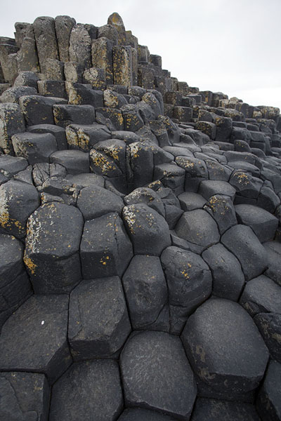 Picture of The honeycomb-like basalt rock formations of the Giant's Causeway
