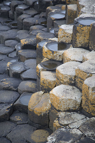 Detail of the mostly hexagonal basalt rocks of the Giant's Causeway | Giant's Causeway | United Kingdom