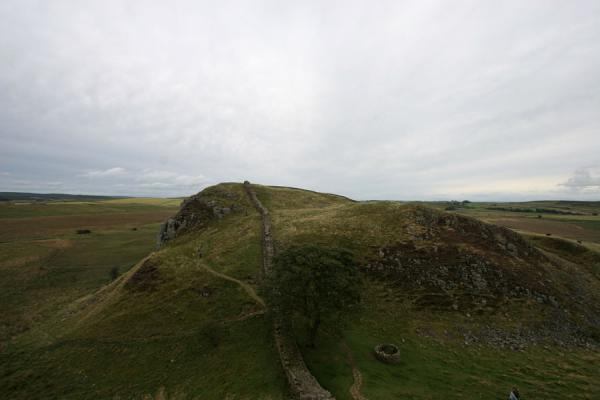 Picture of Hadrian's Wall (United Kingdom): Sycamore Gap with Hadrian's Wall and tree