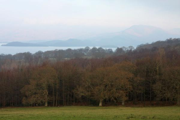 Foto van Early morning view over Loch Lomond: trees, islands, and mountainsBalloch - Verenigd Koninkrijk