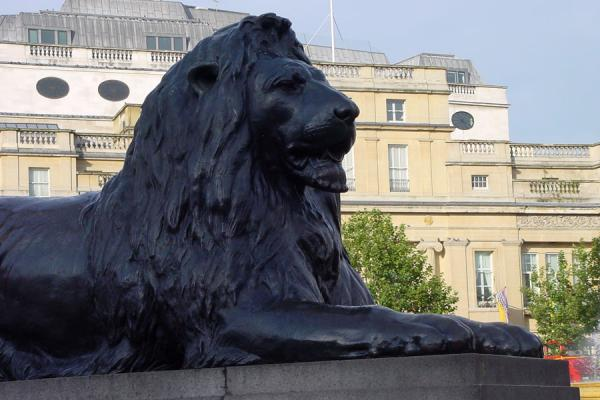 Picture of Trafalgar Square (United Kingdom): Lion at Trafalgar Square - London