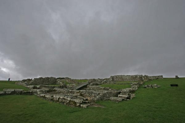 Picture of Ruins of Vercovicium lying on a green hillHousesteads - United Kingdom
