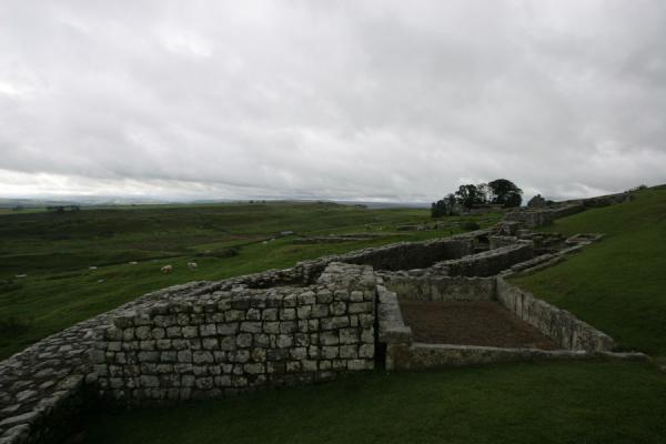 Some of the ruins of Vercovicium | Vercovicium Roman Fort | United Kingdom