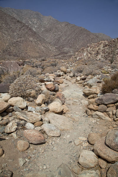 Stones on the trail into the valley with an oasis above Borrego Springs | Anza-Borrego Desert State Park | United States