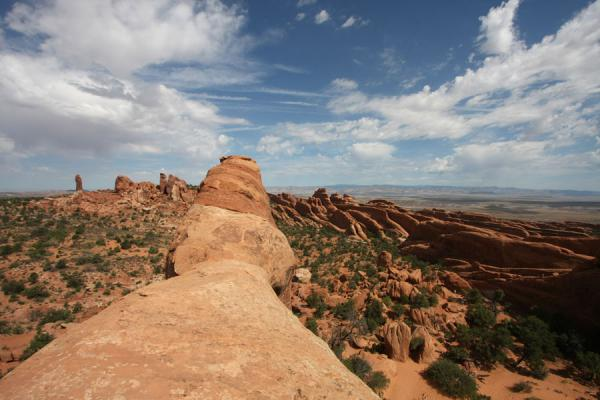 Picture of Arches landscape seen from Double O Arch