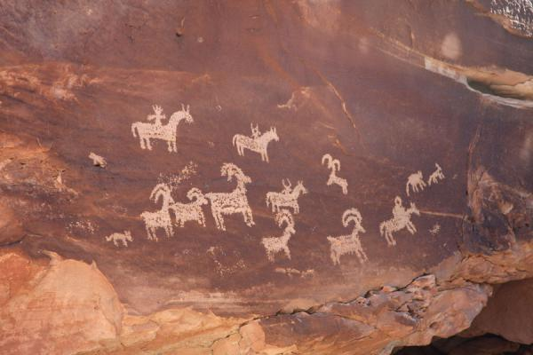 Picture of Petroglyphs representing animals made by the indigenous Ute people