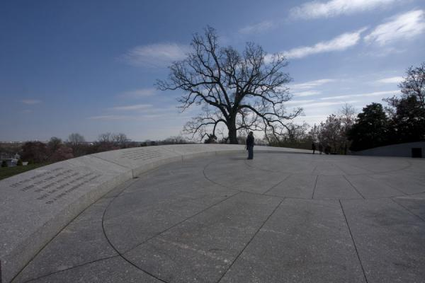 Picture of Man and tree on the terrace at the grave of John F. Kennedy