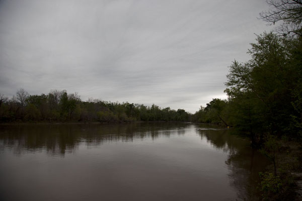 The Neches River is the largest river in the area | Big Thicket National Preserve | U.S.A.