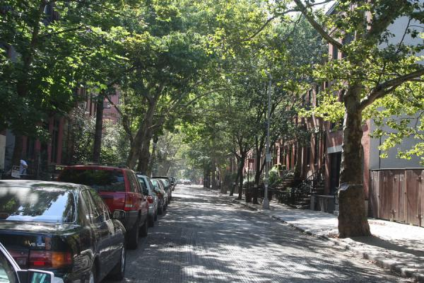 Foto van One of the many quiet streets in Brooklyn HeightsBrooklyn Heights - Verenigde Staten