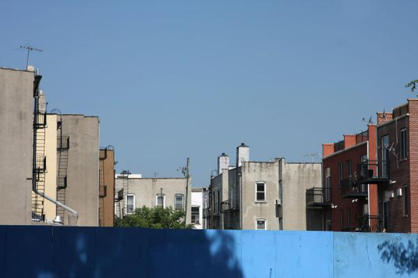 Looking over the fence in Brooklyn Heights | Brooklyn Heights | U.S.A.