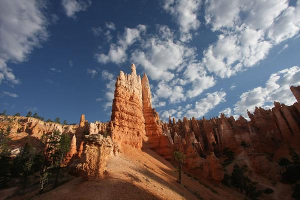 Hoodoo formations seen from inside Queens Garden | Bryce Canyon National Park | U.S.A.