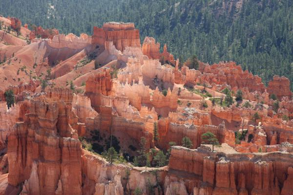 You can let your fantasy go looking at these hoodoo formations | Bryce Canyon National Park | U.S.A.