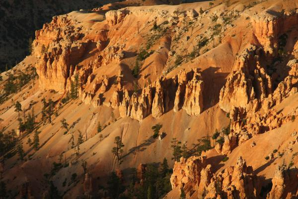 Last daylight over some of the formations of Bryce Canyon | Bryce Canyon National Park | U.S.A.