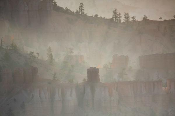 Early morning light trying to penetrate through the landscape of Bryce Canyon | Bryce Canyon National Park | U.S.A.