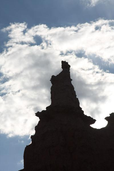 Picture of Silhouette of Queen Victoria - or at least, a look-alike hoodoo