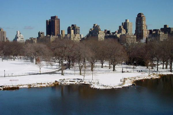 Snowy view of the park | Central Park | U.S.A.