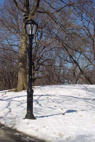 Picture of Central Park New York