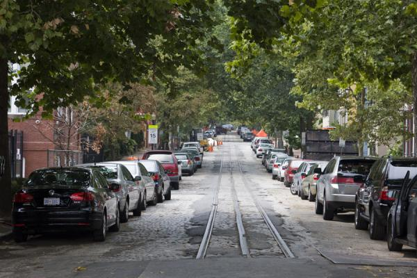 Picture of Tree-lined street in Georgetown with rails for streetcar still in place