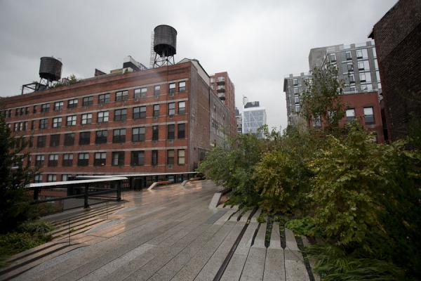 Old railroad tracks integrated into the greenway with bushes and trees | High Line | U.S.A.