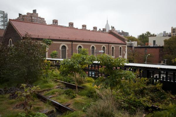 Picture of High Line (U.S.A.): Railway tracks overgrown with bushes alongside a small church