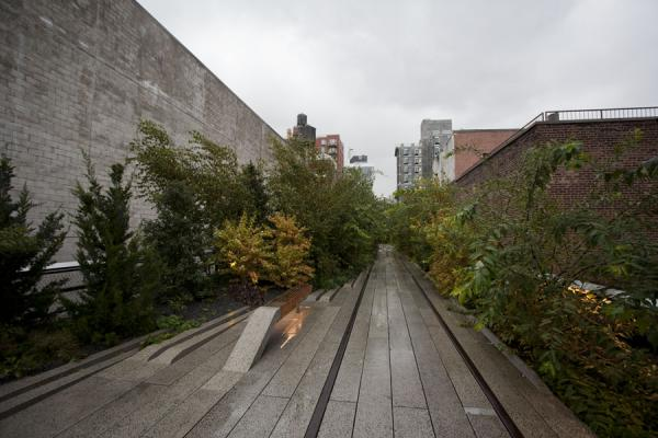 Tracks of railway surrounded by plants and walls on the High Line | High Line | les Etats-Unis