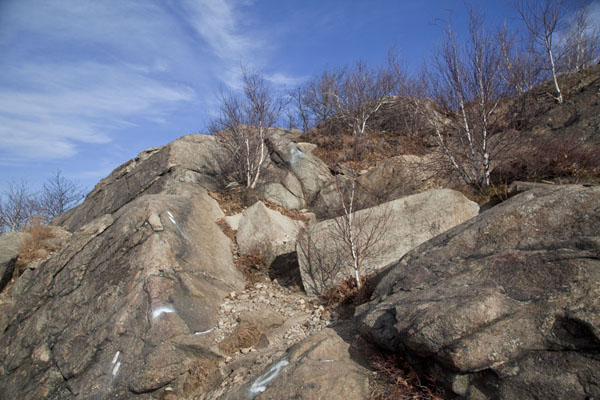 One of the more difficult parts of the Breakneck Ridge Trail | Hudson Highlands | U.S.A.