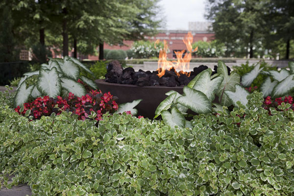 Picture of Speeches of Martin Luther King can be heard at the eternal flame, close to his tomb and the reflecting pool
