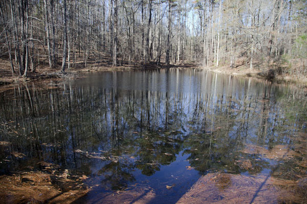 Picture of Mount Arabia Nature Preserve (U.S.A.): Tree-surrounded small lake near Wilburn farm