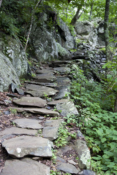 Picture of Whiteoak Canyon Trail leads over rocky stairs