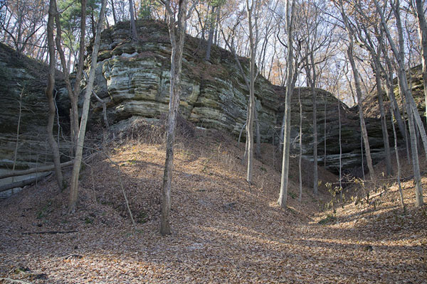 The cliffs near Lonetree Canyon | Starved Rock | U.S.A.