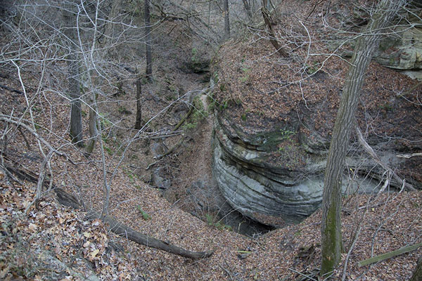 Looking down into Sac Canyon | Starved Rock | U.S.A.