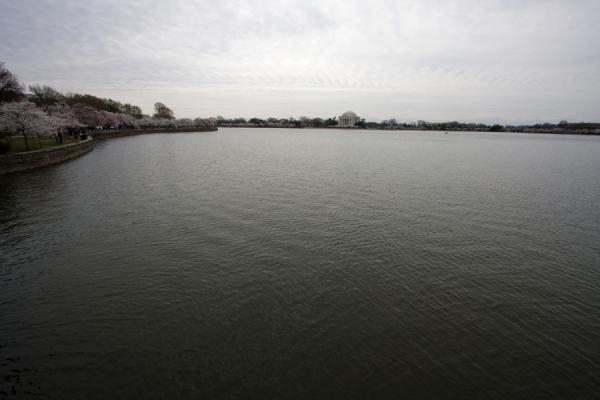 Foto van View of the Tidal BasinTidal Basin - Verenigde Staten