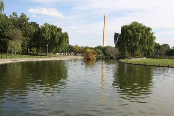 View on Washington Monument seen from the Constitution Gardens Lake | Washington Monument | U.S.A.