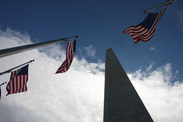 Looking up Washington Monument with flags in the foreground | Washington Monument | U.S.A.