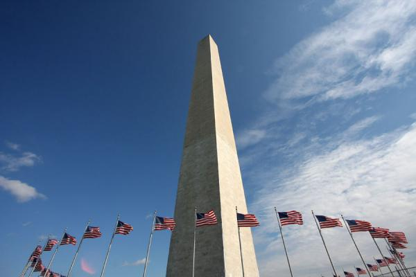 Picture of Obelisk and flags: Washington Monument surrounded by Stars and Stripes