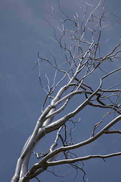 Picture of Top of Graft, the silver-coloured tree sculpture in the Sculpture GardenWashington, DC - U.S.A.
