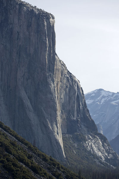 Photo de The dramatic vertical granite cliff of El Capitan rising from the Yosemite Valley floor - les Etats-Unis - Amérique