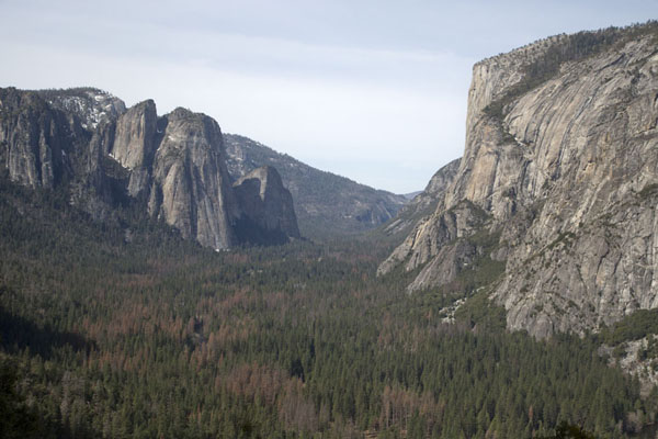 Foto van View of Yosemite Valley with the Cathedral Rocks on the left and El Capitan on the rightYosemite - Verenigde Staten