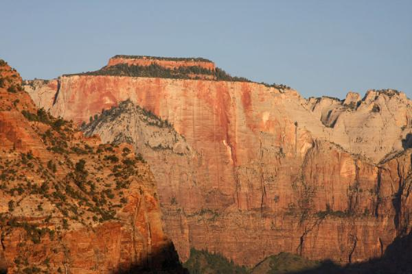 Altar of Sacrifice at sunrise seen from the Canyon Overlook | Zion National Park | U.S.A.