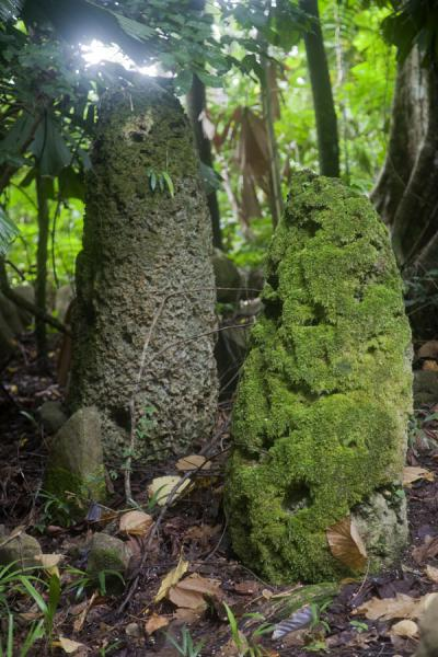 Picture of Lawor cannibal site (Vanuatu): Two family stones at the nasala of Lawor