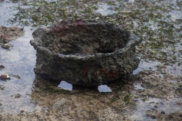 Picture of Million Dollar Point (Vanuatu): Rusting wheel exposed for a few hours during low tide at Million Dollar Point