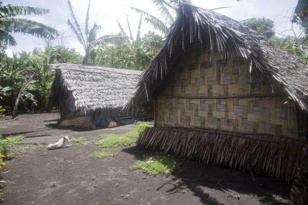 Picture of Port Resolution (Vanuatu): Traditional houses in Port Resolution