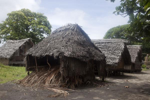 Picture of Port Resolution (Vanuatu): Traditional houses in Port Resolution, all made of natural materials