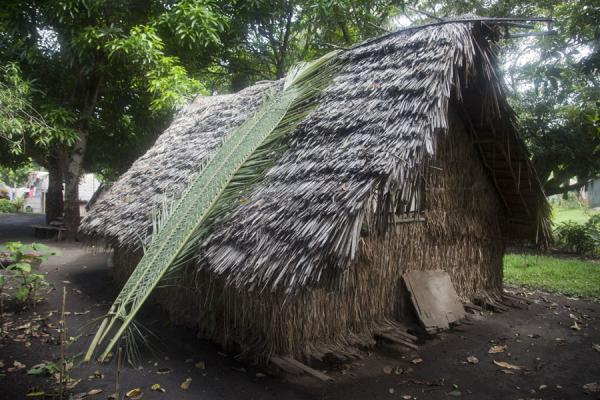 Picture of Port Resolution (Vanuatu): Palm tree leaves leaning against one of the traditional houses in Port Resolution