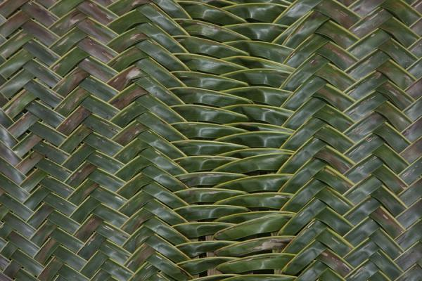 Picture of Port Resolution (Vanuatu): Palm tree leaves woven together drying in the sun