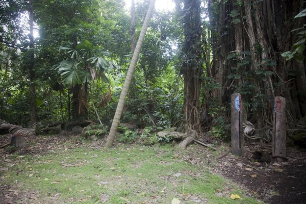 Picture of Wala Island (Vanuatu): The communal area, or nasala, on Wala island