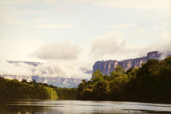 的照片 委内瑞拉 (Tepui and forest seen from a river)