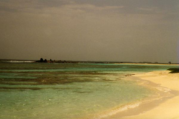Foto van One of those white beaches on the turquoise sea.Los Roques - Venezuela